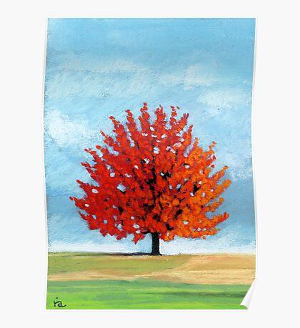 Burst of Red - tree landscape Poster