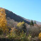 November mountain view by Maria1606