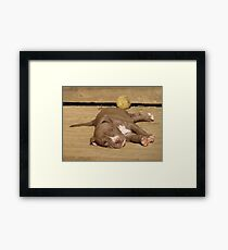 Wake Me When It's Over Framed Print
