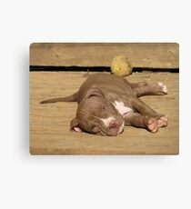 Wake Me When It's Over Canvas Print