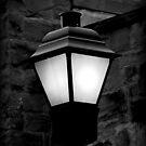 Lamp Post at Night by vigor