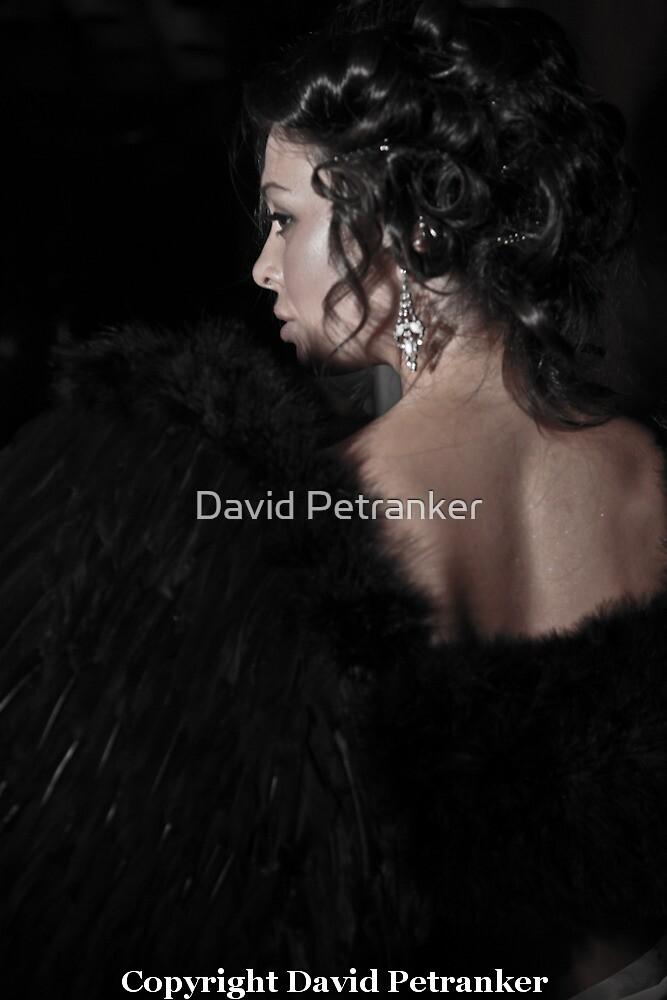 Victoria Secret by David Petranker