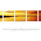 Sunset ~ Signature Series by JuliaKHarwood