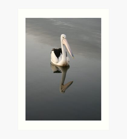 Pelican on a Mirror in Ohmas Bay Art Print