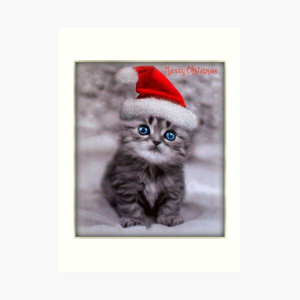 Xmas Cat Art Print