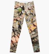 A slice of geology Leggings