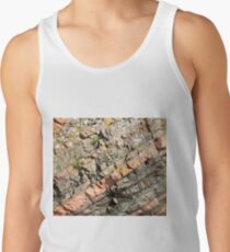 A slice of geology Tank Top