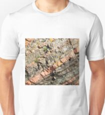 A slice of geology Slim Fit T-Shirt