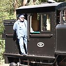 Puffing Billy # 3 by Virginia McGowan