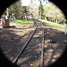 Puffing Billy # 8 by Virginia McGowan
