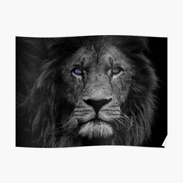Lions Love Funny Wild Big Cat Poster Sweet Cute Animal Picture Beautiful Photo