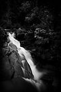 Dark Falls by Vikram Franklin