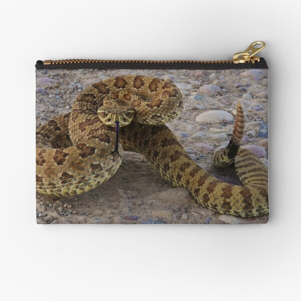 Poised to Strike Zipper Pouch
