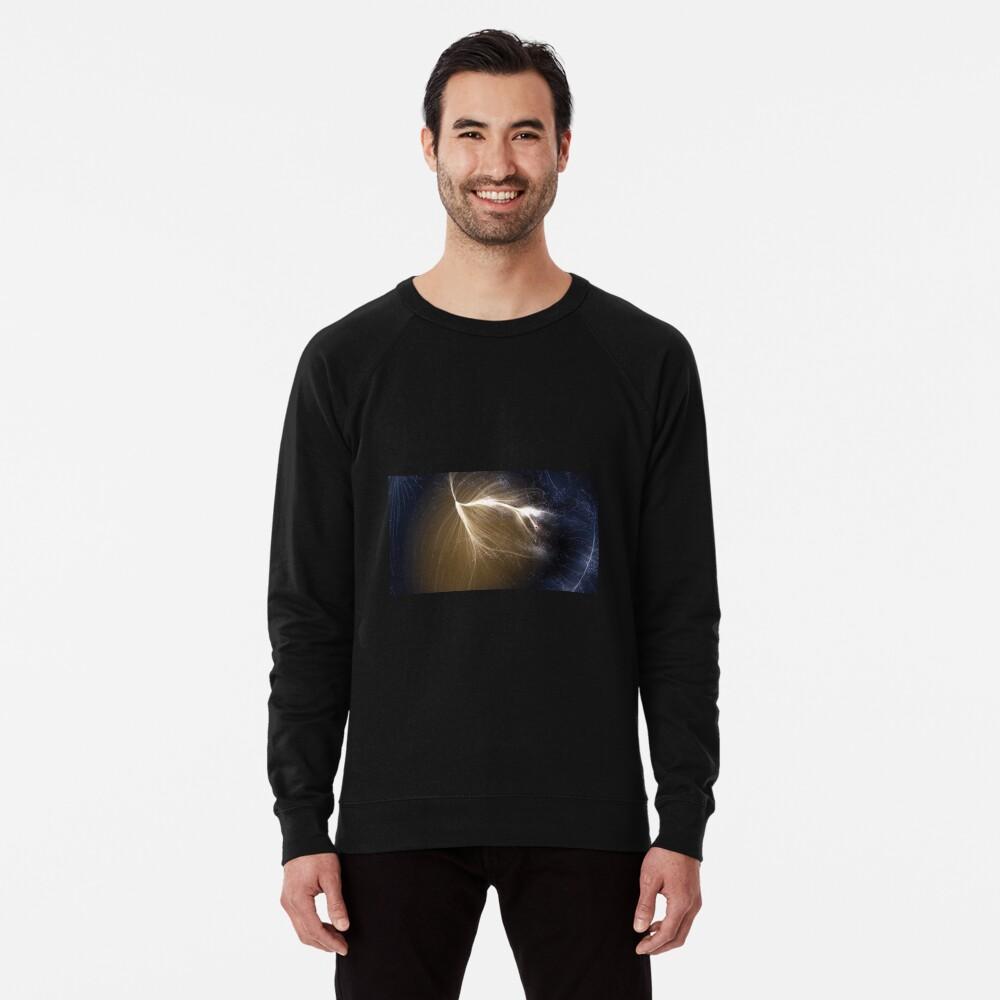 Laniakea Supercluster, Cosmology, Astrophysics, Astronomy, ssrco,lightweight_sweatshirt,mens,black_lightweight_raglan_sweatshirt,front,square_three_quarter,x1000-bg,f8f8f8