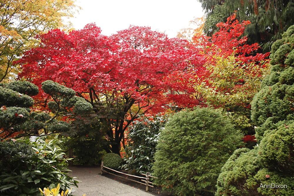 Butchart Gardens : Japenese Garden by AnnDixon