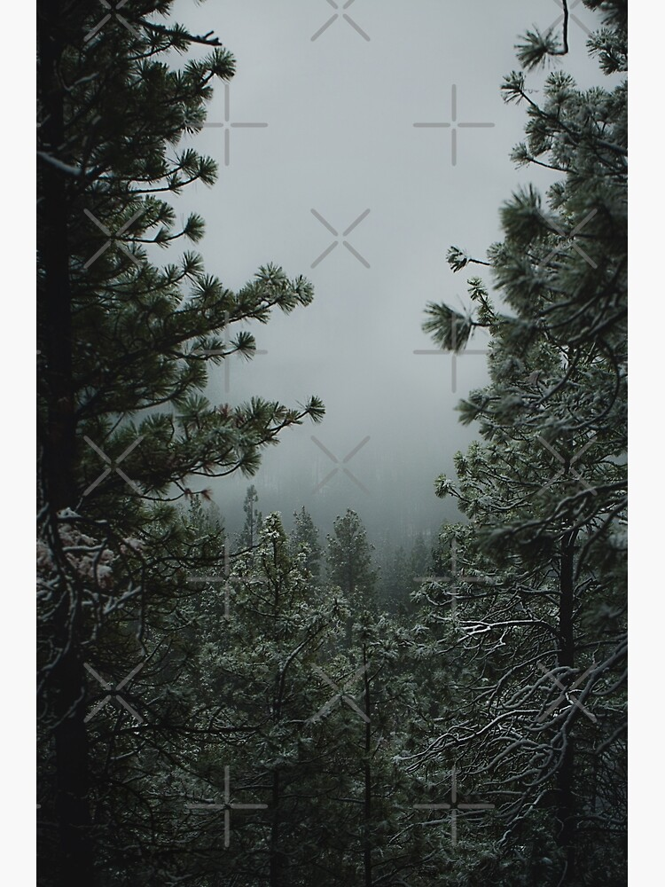 Backwoods Winter by va103