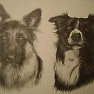 German Shepard and Border Collie by Peter Lawton
