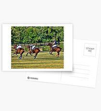 Polo! Postcards