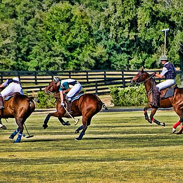 Polo! by DeerPhotoArts