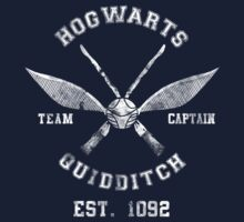 TShirtGifter Presents: Hogwarts Quidditch Athletic Tee Harry Potter Shirt