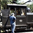 Puffing Billy #12 by Virginia McGowan