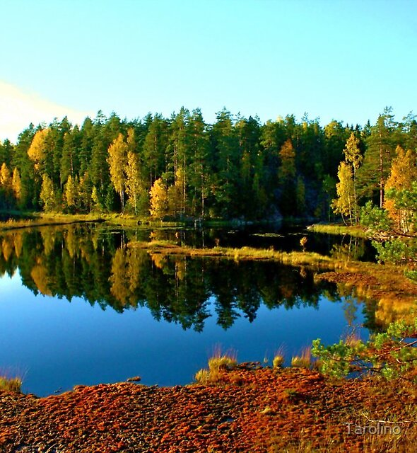 Little lake, Noux National Park, Finland by Tarolino