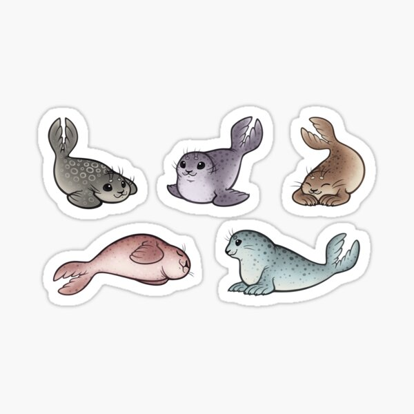 Little Seals Sticker