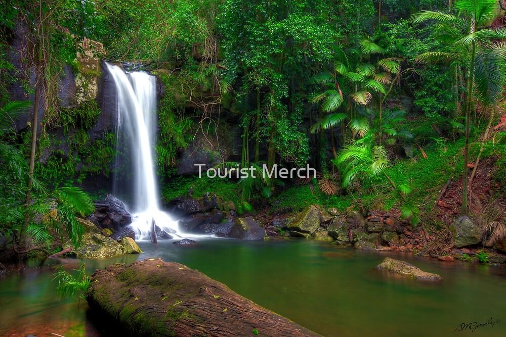 Curtis Falls - Tamborine Mountain by Adam Gormley