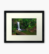 Curtis Falls - Tamborine Mountain Framed Print