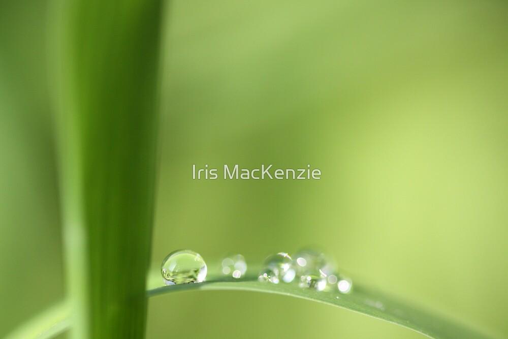 light side by Iris MacKenzie