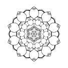 Colour Bliss: Kaleidoscope 1 (Vol 1) by Shai Coggins