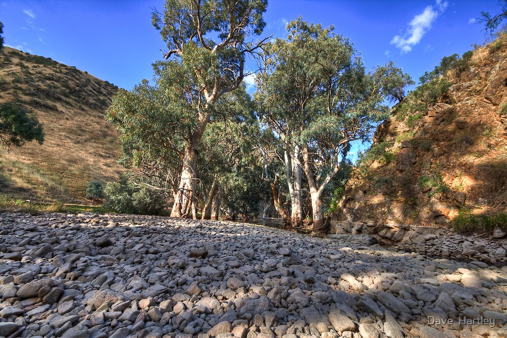 Rocky River Bed by Dave  Hartley