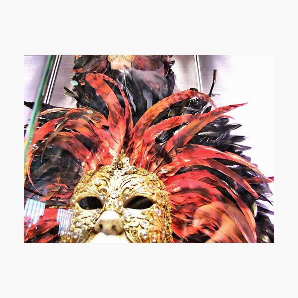 red plumes Photographic Print