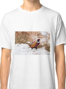 Ringed Neck Pheasant Classic T-Shirt