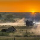 Sunrise and Fog at Donnybrook by Jerry Walter
