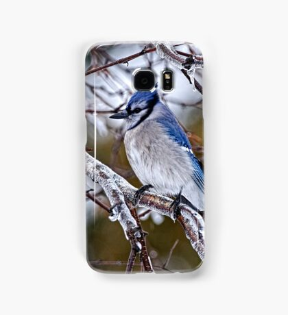 Blue Jay on Ice Covered Branch - Ottawa, Ontario Samsung Galaxy Case/Skin