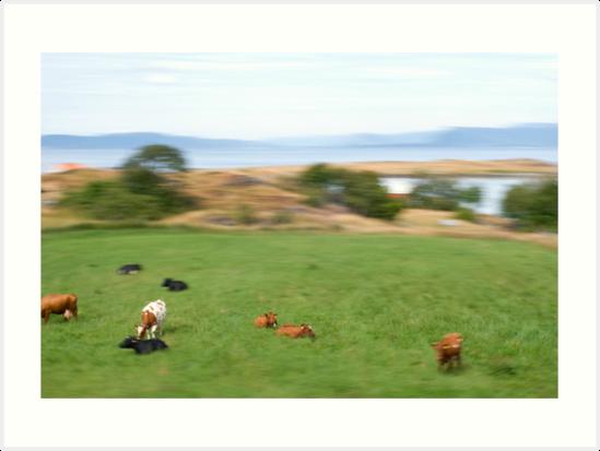 Rennesøy| Forlatt øyeblikk #9 by Bjarte Edvardsen