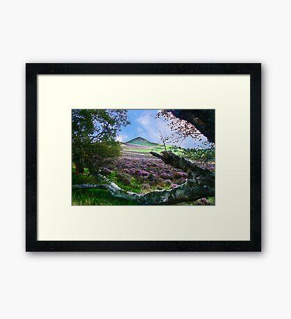 Hawnby Moor #7 Framed Print