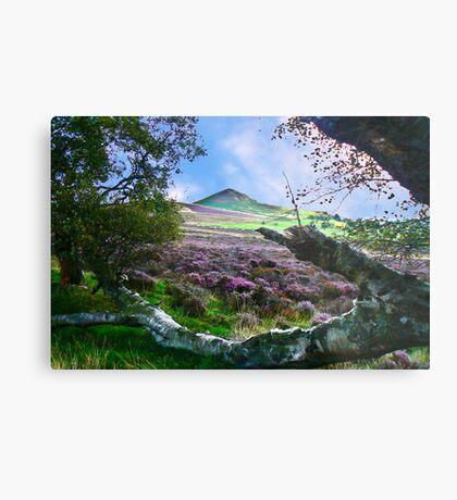 Hawnby Moor #7 Metal Print