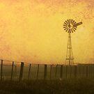 'Windmill dawn' - Yorke Peninsula S.A. by bally58