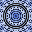 Blue Hoo by Monnie Ryan