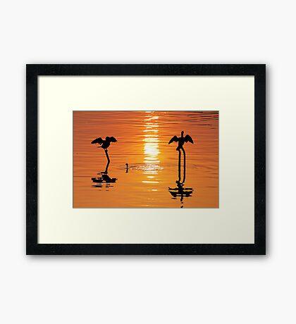 The Golden Hour#4 Framed Print
