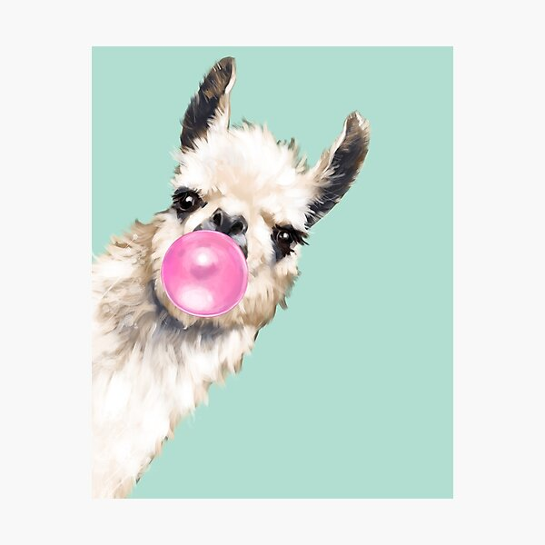 Bubble Gum Sneaky Llama in Green Photographic Print