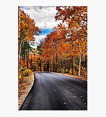 NH Autumn Road 1 Photographic Print
