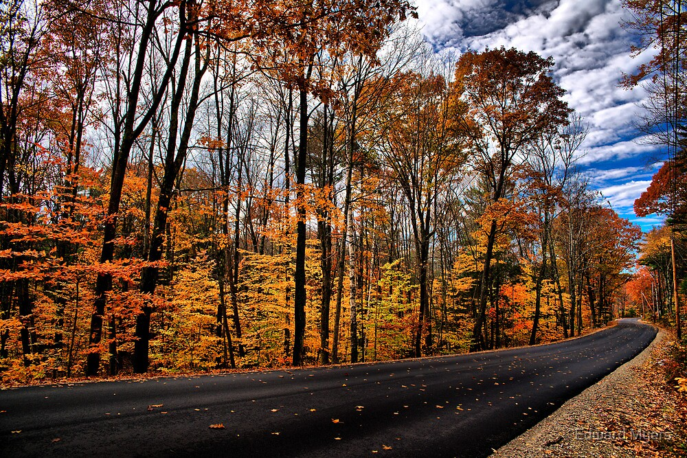 NH Autumn Road 2 by Edward Myers