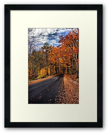 NH Autumn Road 3 by Edward Myers