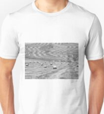 hay cutting patterns, Monticchiello, Tuscany, Italy T-Shirt