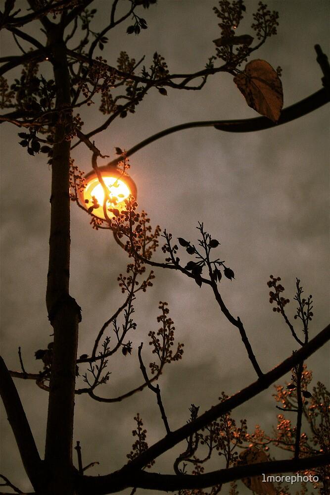 Urban moon by 1morephoto