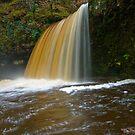 Sgwd Gwladus Falls by Mark Robson