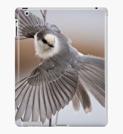 Gray Jay Take Off iPad Case/Skin